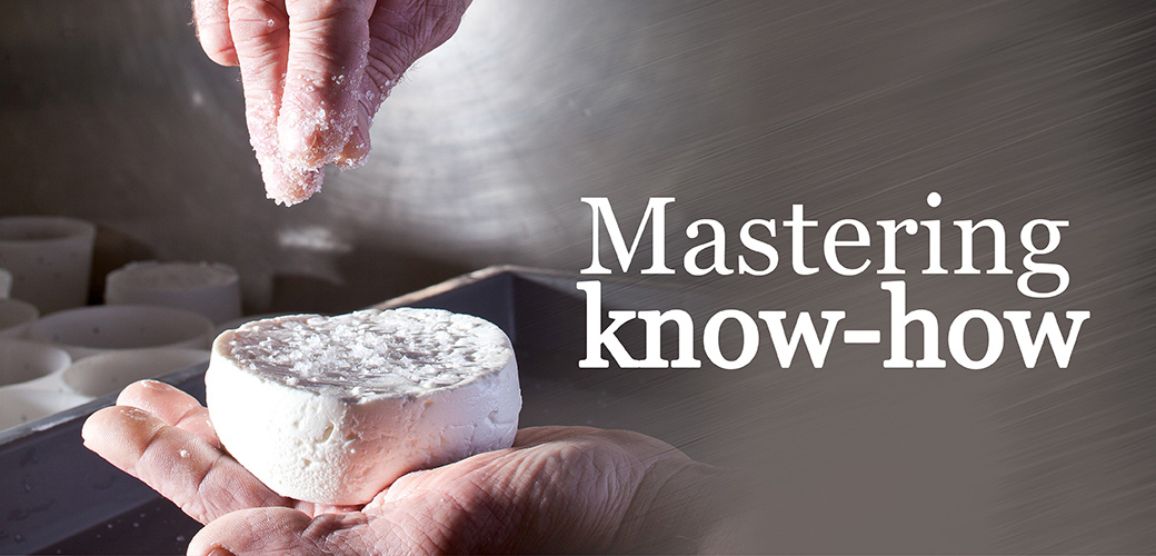 Mastering-know-how